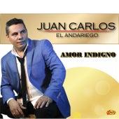 Amor Indigno de Juan Carlos Hurtado