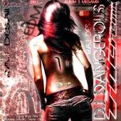 EDM 1 - Album 5 Megamix, Vol 1. de DJ Dangerous Raj Desai