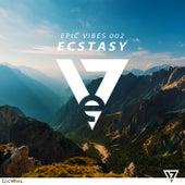 Epic Vibes 002 - Ecstasy de Various Artists