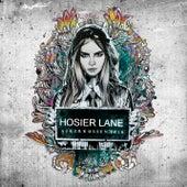 Hosier Lane 2016 by James Wilson