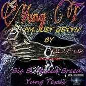 I'm Just Gettin' By(feat. Big B & Mixed Breed) by Yung Texas