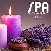 Spa Relaxing Resort Vol.1 di Various Artists