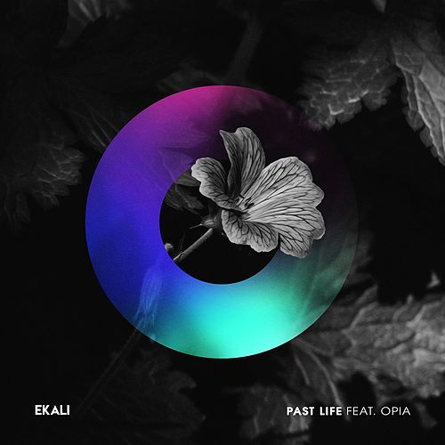 Past Life (feat. Opia) by Ekali