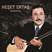 Collection von Neşet Ertaş