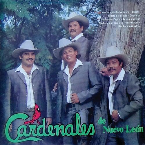 Y Qué Más Da by Cardenales De Nuevo León