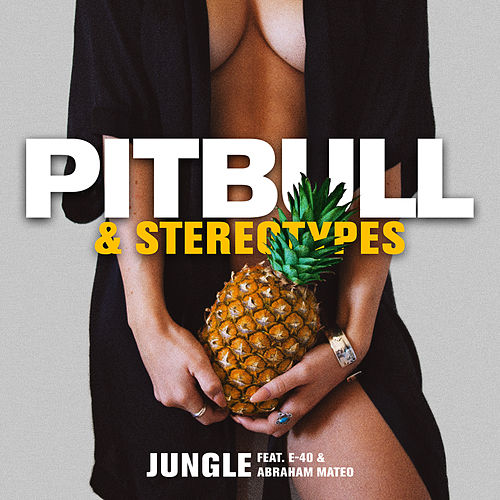 Jungle by Pitbull & Stereotypes