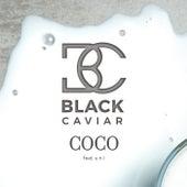 Coco de Black Caviar
