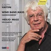 Haydn: Harmoniemesse, Heiligmesse by Various Artists