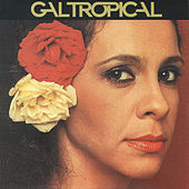 Gal Tropical de Gal Costa