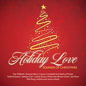 Holiday Love Sounds of Christmas de Various Artists