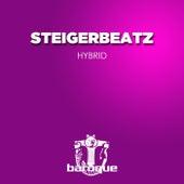 Hybrid by Steigerbeatz