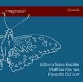Imagination von Various Artists