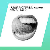 Small Talk by Fake Pictures & Tiger Park