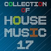 Collection of House Music, Vol. 17 by Various Artists