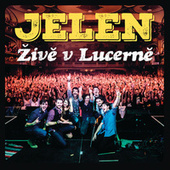 Zive v Lucerne (Live) de Various Artists