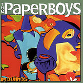 Molinos by Paperboys