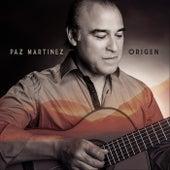 Origen de Paz Martínez