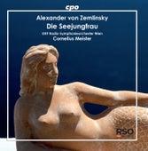 Zemlinsky: Die Seejungfrau (Live) by Radio Symphonieorchester Wien