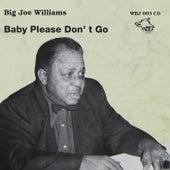 Big Joe Williams - Baby Please Don´t Go by Big Joe Williams