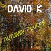 David K - Autumn Plucks by David K.