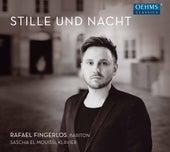 Stille und Nacht by Various Artists