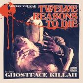 12 Reasons to Die by Various Artists