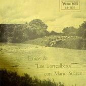 Exitos de los Torrealberos by Los Torrealberos