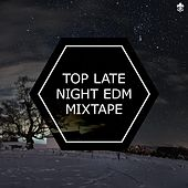 Top Late Night EDM Mixtape by Various Artists
