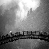 Faith Can Move Mountains de Pigeon Dandelar