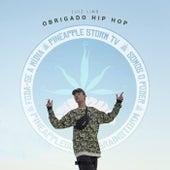Obrigado Hip Hop by Luiz Lins