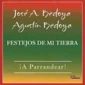 Festejos de Mi Tierra by Various Artists