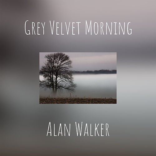Grey Velvet Morning by Alan Walker