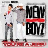 You're A Jerk by New Boyz