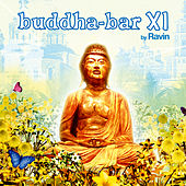 Buddha Bar XI de Various Artists