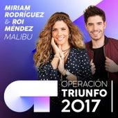 Malibu (Operación Triunfo 2017) de Roi Méndez