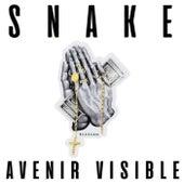Avenir Visible by Snake