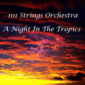 A Night In The Tropics by 101 Strings Orchestra