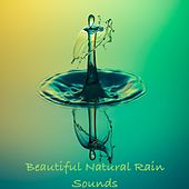 10 Beautiful Natural Rain Sounds, Cascading Water for Meditation, Calm Rainfall for Sleep, Gentle Sounds to Soothe and Relax von Meditación Música Ambiente
