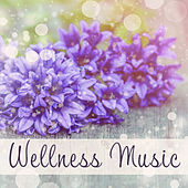 Wellness Music – Delicate Melodies for Spa, Sleep, Massage, Zen Spa, Sounds of Sea, Relaxing Songs by S.P.A