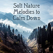 Soft Nature Melodies to Calm Down – Easy Listening Nature Sounds, Time to Rest, Healing Melodies, Spirit Journey by Relaxed Piano Music