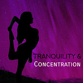 Tranquility & Concentration – Yoga Music, Deep Meditation, Relief for Body, Peaceful Mind, Calm Down by Yoga Music