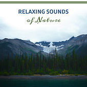 Relaxing Sounds of Nature by Nature Sounds (1)