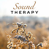 Sound Therapy – Soothing Music, Water Reduces Stress, Peaceful Mind, Meditate, Nature Sounds de Sounds Of Nature