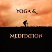 Yoga & Meditation by Reiki