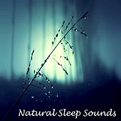 5 Loopable Rain Sounds for Meditation, Relaxation, Sleep and Wellbeing by Meditation Music Zone