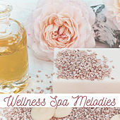 Wellness Spa Melodies de Zen Meditation and Natural White Noise and New Age Deep Massage