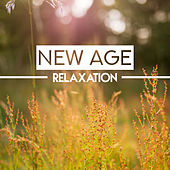 New Age Relaxation – Soothing Music for Mind, Meditate, Pure Chill, Sounds of Nature Relieve Stress, Tranquility de Nature Sound Collection
