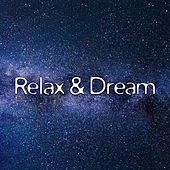 Relax & Dream – New Age Music 2017, Sounds of Nature, Calm of Mind, Daily Meditation, by Chakra's Dream