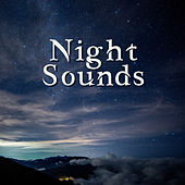 Night Sounds – Pure Sleep, Deep Relaxation, Sweet Dreams, Melodies at Goodnight, Soft New Age by Deep Sleep Relaxation