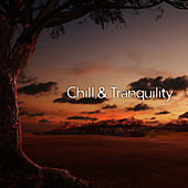 Chill & Tranquility – Deep Relief, Nature Sounds to Rest, Ambient Music, Perfect Relax, Soothing Music by Nature Sounds (1)